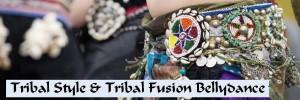 BANNER Tribal Fusion -Einsteiger